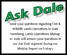 Ask_Dale_Logo.png